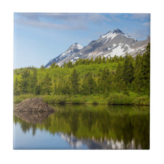 Mountain Peaks Reflect Into A Beaver Pond Tile