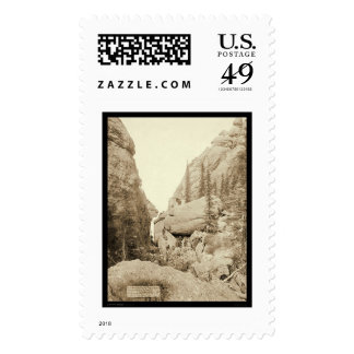 Mountain Picnic Party Custer City SD 1891 Stamps