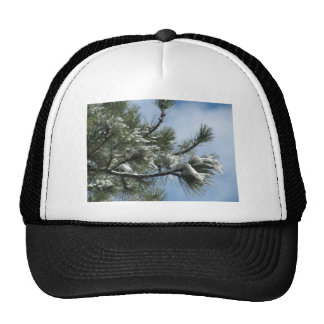 Mountain Pine Magic After the Storm Mesh Hat