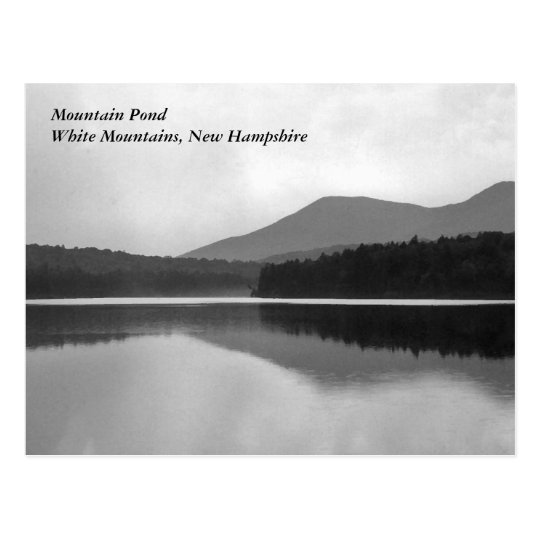 Mountain Pond Postcard