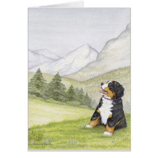 Mountain Pup Cards