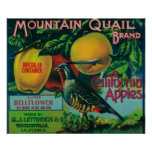 Mountain Quail Apple Crate Label Poster