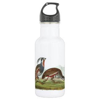 Mountain Quail by Audubon Water Bottle