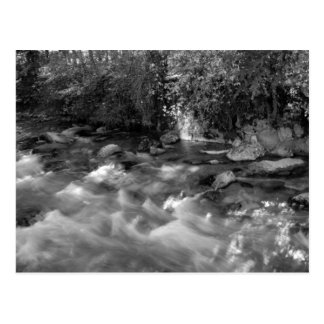 """Mountain River"" custom postcards"