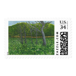 Mountain Serenity Postcard Stamps
