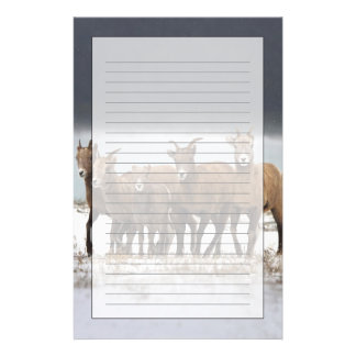 Mountain Sheep Family Custom Stationery