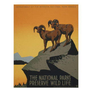 Mountain Sheep National Parks WPA Vintage Travel Poster
