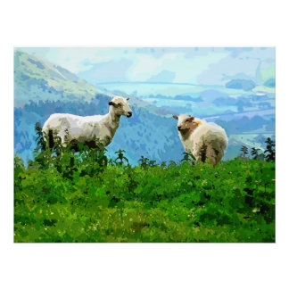 MOUNTAIN SHEEP POSTERS