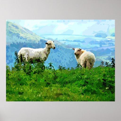 MOUNTAIN SHEEP POSTERS