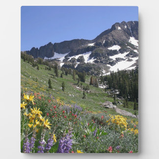 Mountain Spring Bloom Flowers Plaques