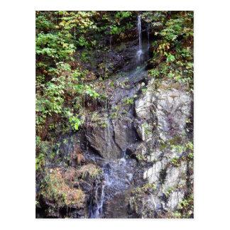 Mountain Spring Postcard