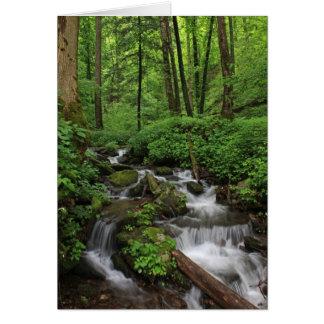 Mountain Stream Card