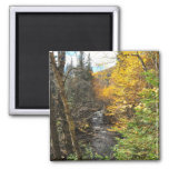 Mountain Stream Foliage Jacques Cartier Magnet