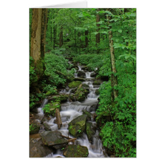 Mountain Stream Stationery Note Card