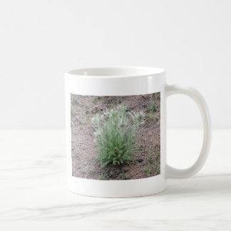 Mountain thistle coffee mug