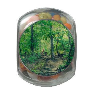 Mountain Trail Glass Jar