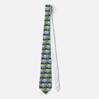 Mountain trail with wooden fence foreground neck tie