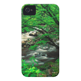 Mountain Tremont Great Park Case-Mate iPhone 4 Cases