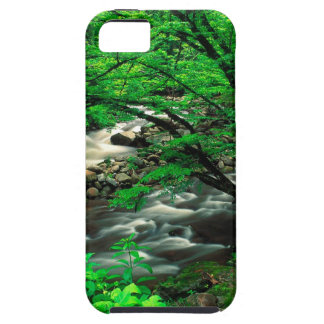 Mountain Tremont Great Park iPhone 5 Case