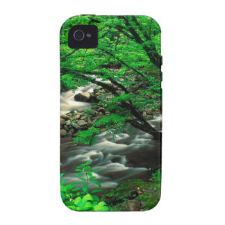 Mountain Tremont Great Park iPhone 4/4S Cases