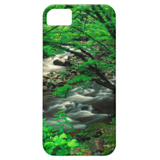 Mountain Tremont Great Park iPhone 5/5S Cover
