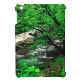 Mountain Tremont Great Park Cover For The iPad Mini