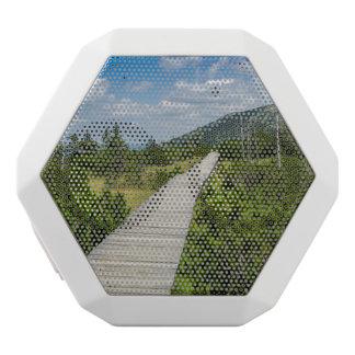Mountain Tundra Wooden Path Landscape White Boombot Rex Bluetooth Speaker