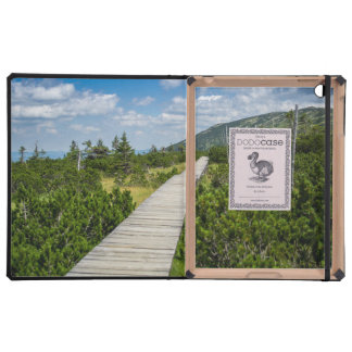 Mountain Tundra Wooden Path Landscape iPad Covers