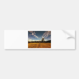 mountain view bumper sticker