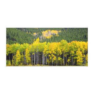 Mountain View de Colorado Impresión En Lienzo Estirada