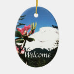 Mountain View Welcome Sign Double-Sided Oval Ceramic Christmas Ornament