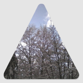 Mountain Visions Stickers