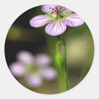 mountain wildflower stickers