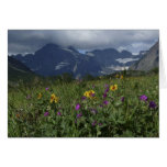 Mountain Wildflowers Blank Inside Greeting Card