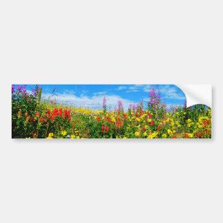 mountain wildflowers bumper sticker