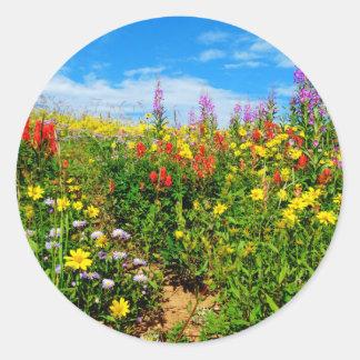 mountain wildflowers classic round sticker