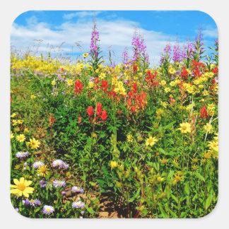mountain wildflowers square sticker
