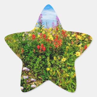 mountain wildflowers star sticker