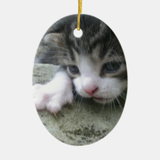 Mountaineer Kitten Ceramic Ornament