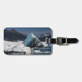 mountains and ice in Alaska Travel Bag Tags