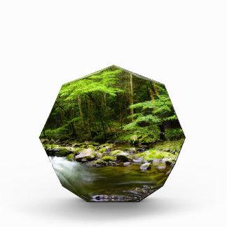 Mountains and Streams Acrylic Award