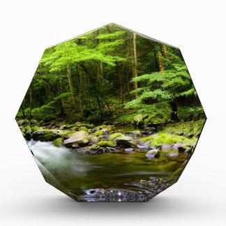 Mountains and Streams Award