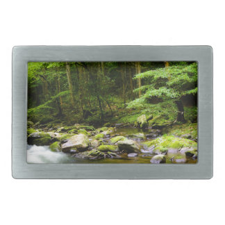 Mountains and Streams Belt Buckle