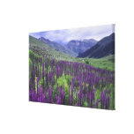 Mountains and wildflowers in alpine meadow, 2 canvas print