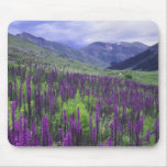 Mountains and wildflowers in alpine meadow, 2 mousepad