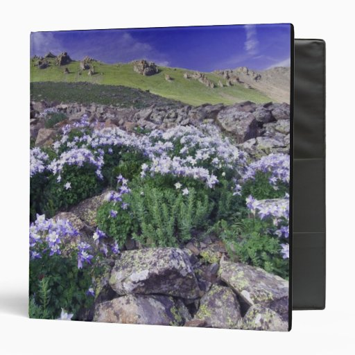 Mountains and wildflowers in alpine meadow, binder