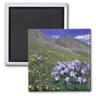 Mountains and wildflowers in alpine meadow, Blue 2 Inch Square Magnet