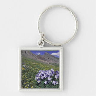 Mountains and wildflowers in alpine meadow, Blue Silver-Colored Square Keychain