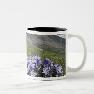 Mountains and wildflowers in alpine meadow, Blue Two-Tone Coffee Mug