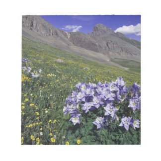 Mountains and wildflowers in alpine meadow, Blue Memo Notepad